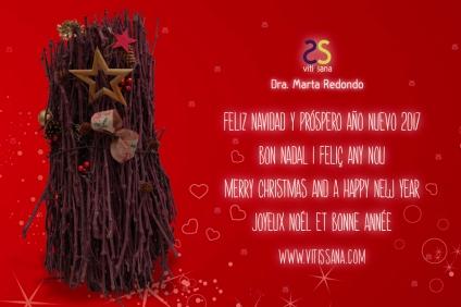 vitissana-postal-navidad-2016